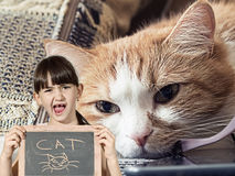 Sad cat and girl with chalkboard Stock Photography