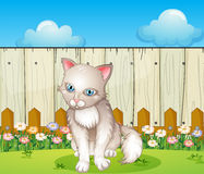 A sad cat near the wooden fence Stock Photo