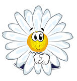 Sad chamomile flower cartoon Royalty Free Stock Photo