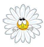 Sad Chamomile flower cartoon Stock Photo