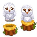Sad and cheerful owlet on the nest on stump Stock Photo