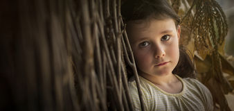 Sad countryside girl in corn Royalty Free Stock Photography