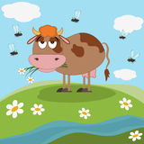 Sad cow on the meadow Royalty Free Stock Photo