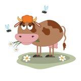 Sad cow on the meadow Royalty Free Stock Photos