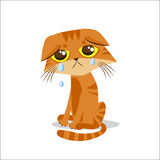 Sad Crying Cat. Cartoon Vector Illustration. Crying Cat Meme. Cat Face. Stock Photos