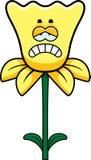 Sad Daffodil Royalty Free Stock Images