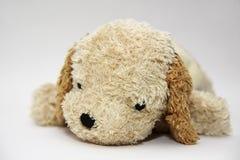 Sad Dog Doll Royalty Free Stock Photography