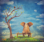 Sad elephant sitting on a bench Stock Images