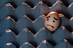 Sad faced egg in an egg tray. A horizontal shot of an egg with a sad face painted on it sitting alone in a cardboard egg carton royalty free stock images