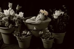 Sad flower girl. Sepia or antique tone portrait of girl in flower pot Royalty Free Stock Photography