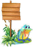 A sad frog above the waterlily beside the wooden signboard Stock Photo