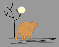 Sad ginger cat. Sadly fat ginger cat under full moon near  tree  silhouette  on grey background Royalty Free Stock Images