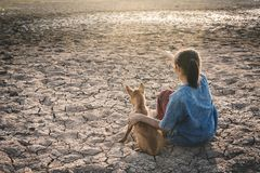Sad girl tired and exhausted with dog on cracked dry ground. Concept drought and shortage of water crisis Stock Photos