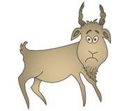 Sad goat Stock Photo