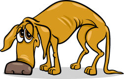 Sad homeless dog cartoon illustration Stock Images