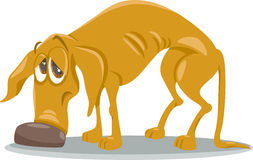 Sad homeless dog cartoon illustration Stock Photo