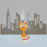 Sad kitten on a rain vector illustration. Cat adopt concept poster Stock Photography