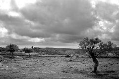 Sad Landscape. Sad and desolate landscape in the Sicilian hinterland stock photos