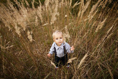 Sad little boy in high grass Stock Photos