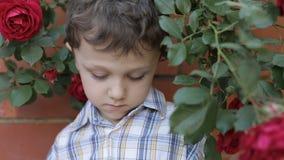 Sad little boy outdoors stock footage