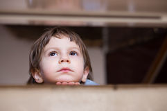 Sad little boy thinking looking up Royalty Free Stock Image