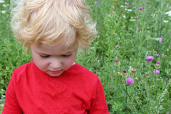 Sad little girl. Looking down - standing in a wild meadow Royalty Free Stock Photography
