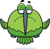 Sad Little Hummingbird Stock Photography