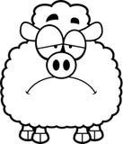 Sad Little Lamb Stock Images