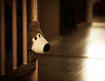 Sad lone teddy bear. Lonely brown teddy bear in a childs cot Royalty Free Stock Photos