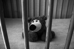 Sad lone teddy bear Royalty Free Stock Photo
