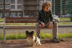 Sad lonely guy sitting on a bench with his dog. the difficulties of adolescence in communication concept. Street stock image