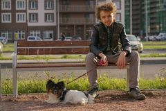 Sad lonely guy sitting on a bench with his dog. the difficulties of adolescence in communication concept. Street royalty free stock photography
