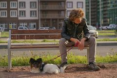 Sad lonely guy sitting on a bench with his dog. the difficulties of adolescence in communication concept. Street royalty free stock images