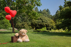 Sad and lonesome teddy bear with red hearts balloons. Concept for missing you or forgive me.