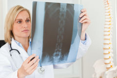 Sad looking doctor looking at x-ray. In her office Royalty Free Stock Photos