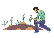 Sad man tending the flowers in the flowerbed or on the grave. Vector illustration, isolated on white. Sad man tending the flowers in the flowerbed or on the royalty free illustration