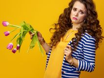 Sad modern woman on yellow background holding wilted flowers. Sad modern woman with long wavy brunette hair on yellow background holding wilted flowers Royalty Free Stock Photography