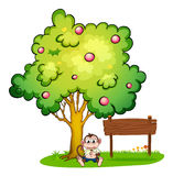 A sad monkey under the tree beside the empty wooden board Stock Photography