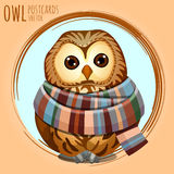 Sad owl in a warm scarf, vector cartoon series Stock Photography