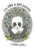 Sad panda Stock Photos