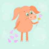 Sad pig with a flower in a hand. Cute piggy in cartoon style on blue background. Royalty Free Stock Photo