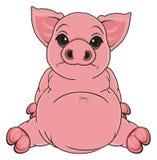 Sad pig sit Stock Photo
