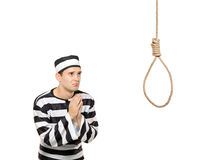 Sad prisoner in begging gesture with a noose. A sad prisoner with both hands clasp in begging gesture with a hanging noose against white background Royalty Free Stock Image