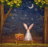 Sad rabbit  with suitcase sitting on the bench in the forest Royalty Free Stock Photography