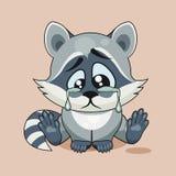 Sad Raccoon cub crying Stock Images