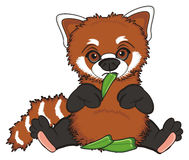 Sad red panda and foods Royalty Free Stock Photo