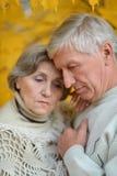 Sad senior couple. Portrait of a sad senior couple in autumn park stock photo