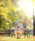 Sad senior man with cane sitting on bench in a park Royalty Free Stock Image
