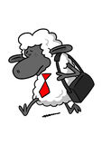 Sad Sheep Going to Work Royalty Free Stock Image