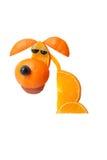 Sad sitting dog made of oranges Royalty Free Stock Photography